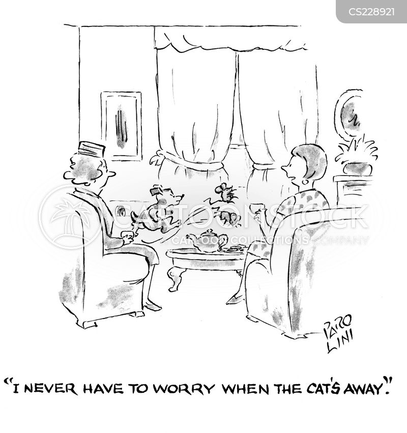 cats away cartoon