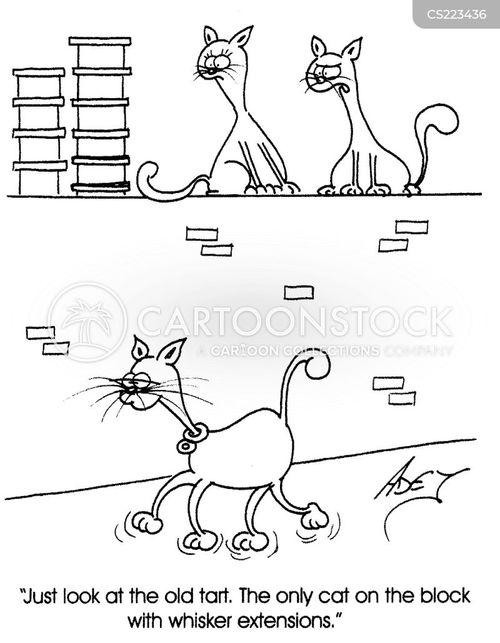 tart cartoon