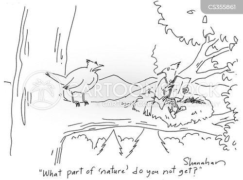 refined cartoon