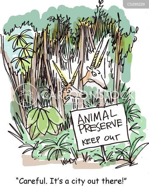 animal preserve cartoon