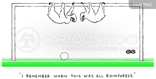 brazil cartoon