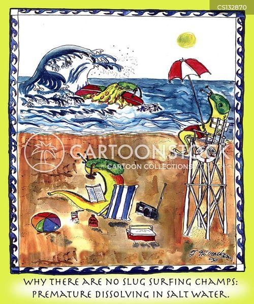 salt water cartoon