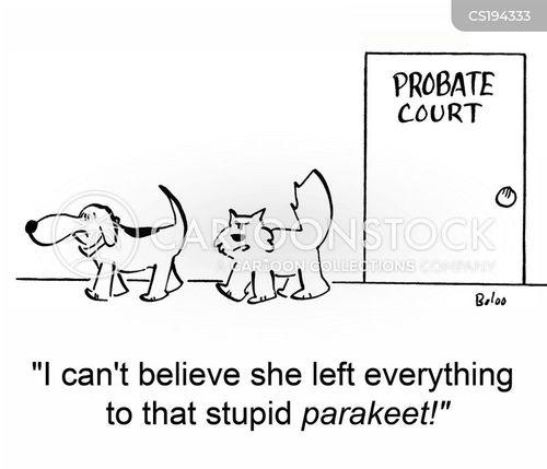 parakeet cartoon