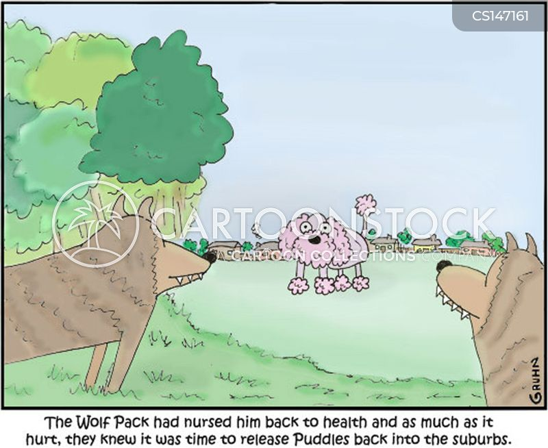 poodles cartoon