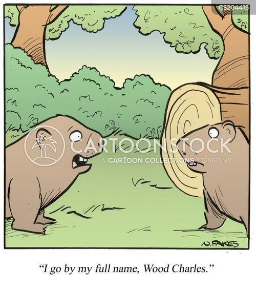full name cartoon