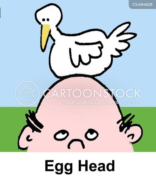 egg heads cartoon