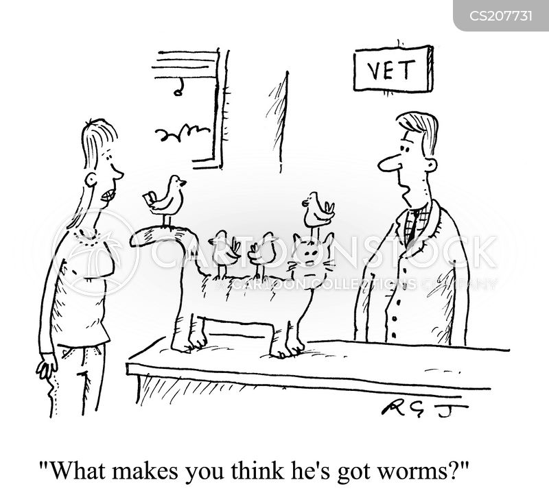 veterinary practises cartoons and comics
