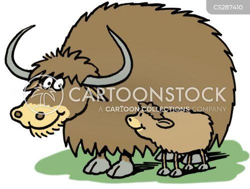baby animals cartoon