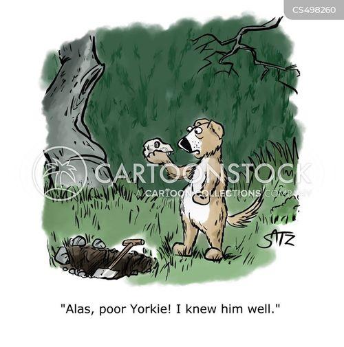 yorkshire terriers cartoon