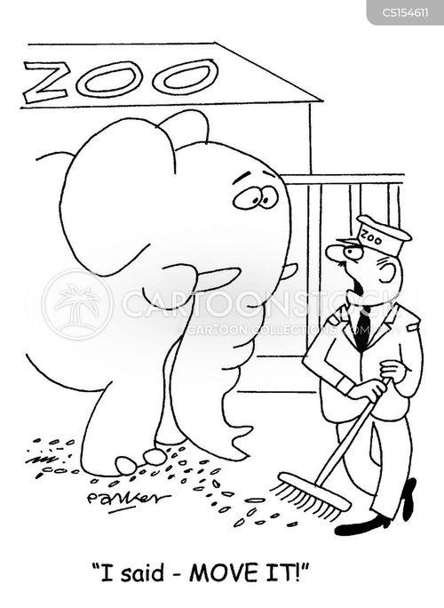 elepahnts cartoon