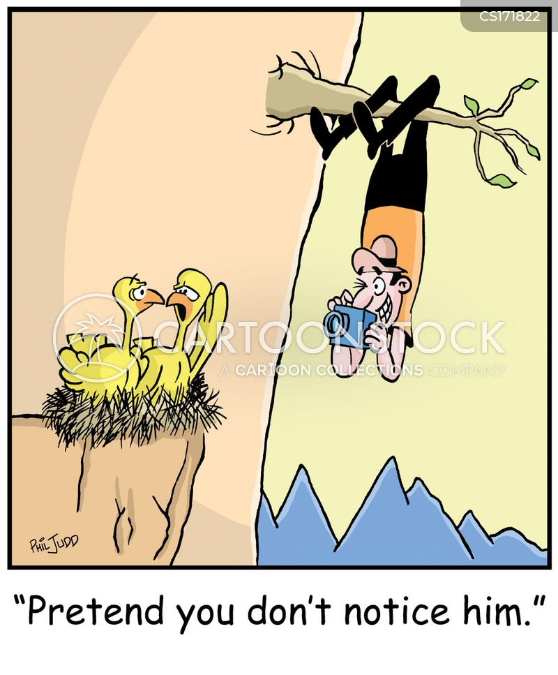 Bird Watching cartoons, Bird Watching cartoon, funny, Bird Watching picture, Bird Watching pictures, Bird Watching image, Bird Watching images, Bird Watching illustration, Bird Watching illustrations