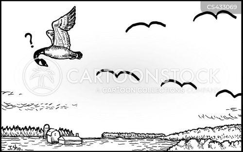 shortcut cartoon