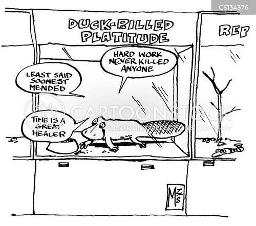 platitudes cartoon