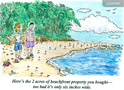 beachfront cartoon