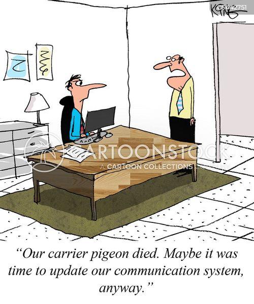 carrier pigeon cartoon
