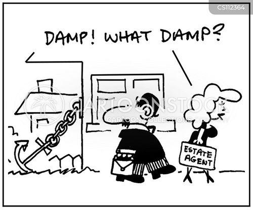 damp problems cartoon