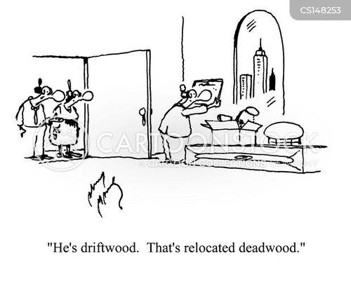 driftwood cartoon