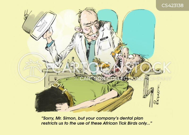 tick birds cartoon
