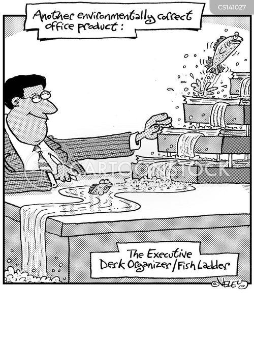 fish ladder cartoon