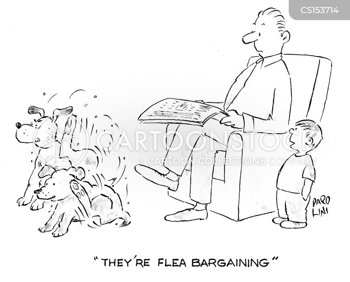 flea bargaining cartoon