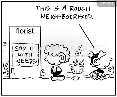 area cartoon
