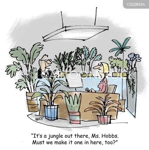 office plants cartoon 10 of 22 - Office Plants