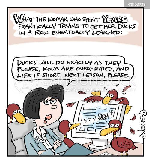 ducks in a row cartoon
