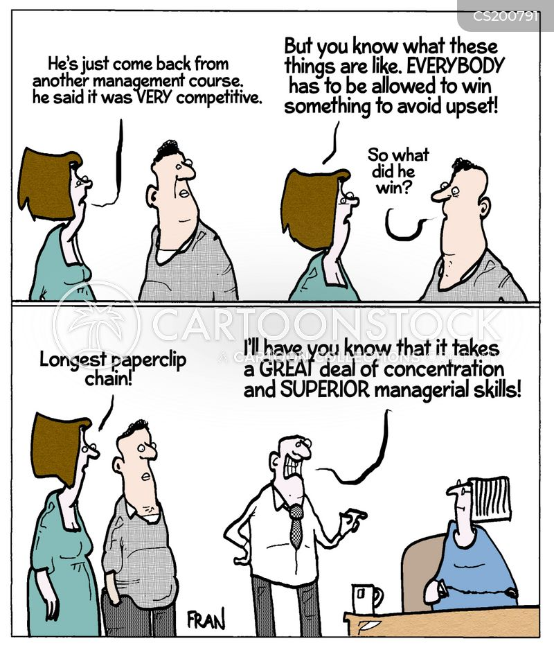 managerial skill cartoon