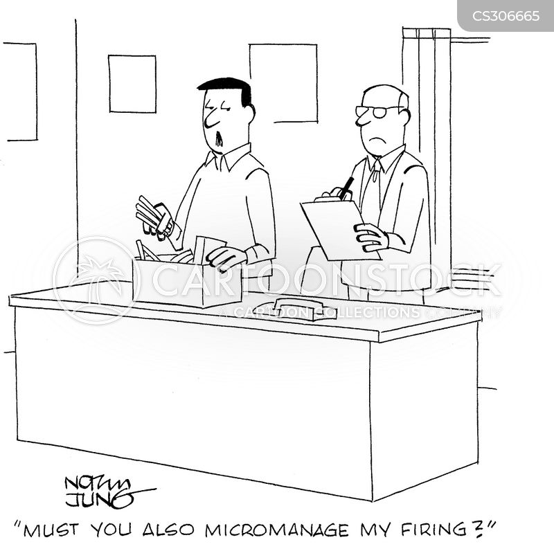 micro-manager cartoon