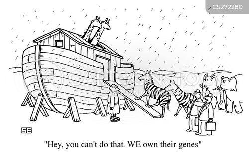 the ark cartoon