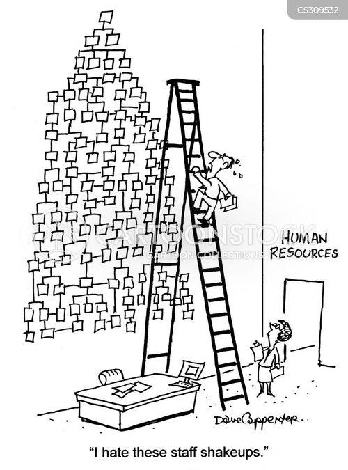 reshuffle cartoon