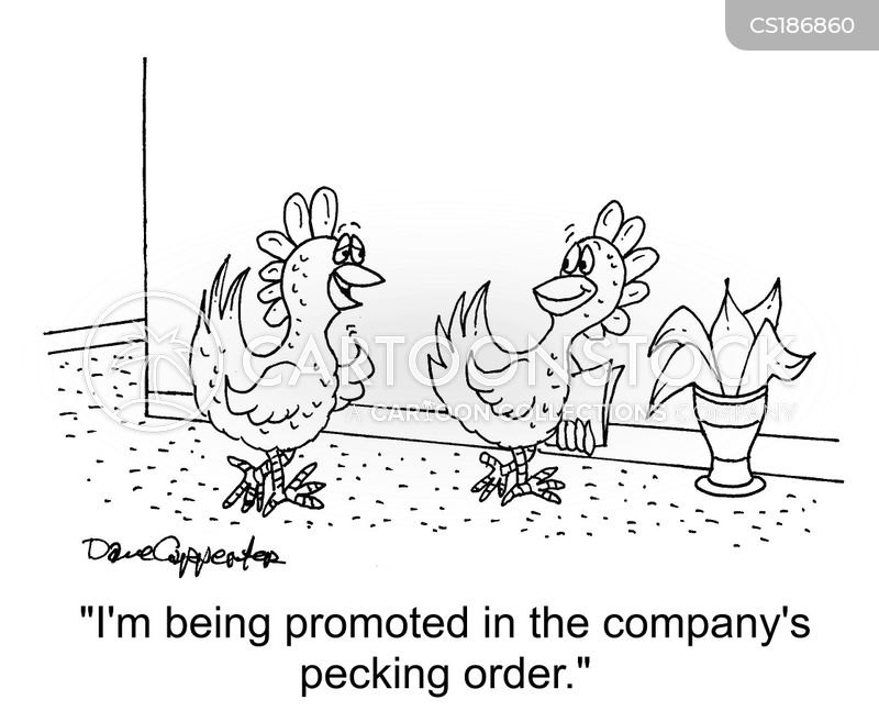 Pecking Order cartoons, Pecking Order cartoon, funny, Pecking Order picture, Pecking Order pictures, Pecking Order image, Pecking Order images, Pecking Order illustration, Pecking Order illustrations