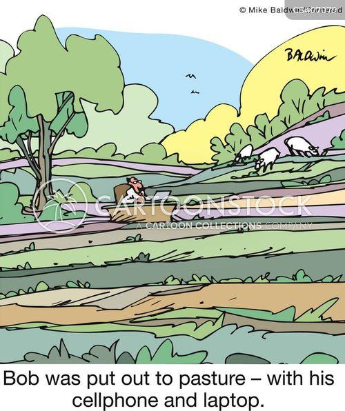 contract basis cartoon