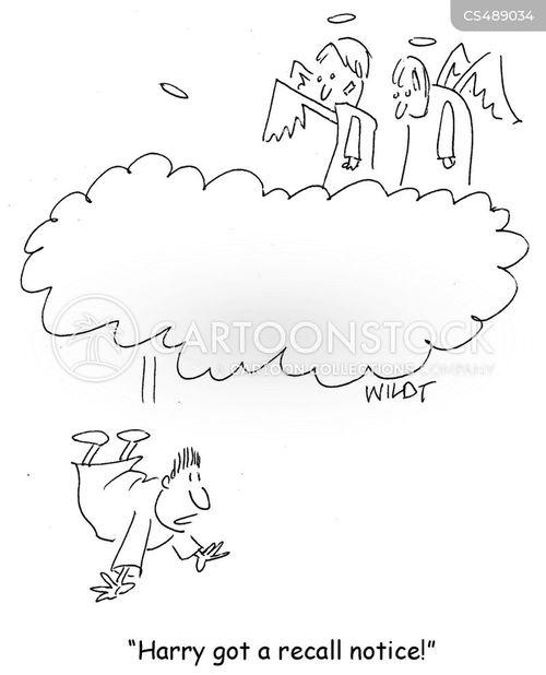 fall from grace cartoon