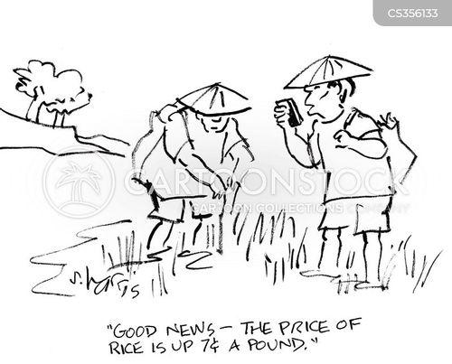 rice cartoon