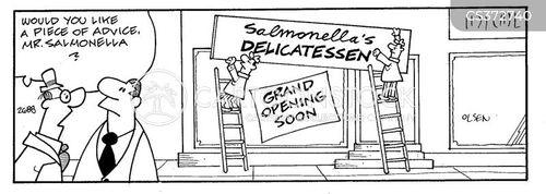 salmonella cartoon