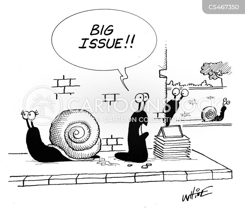 bivalve cartoon