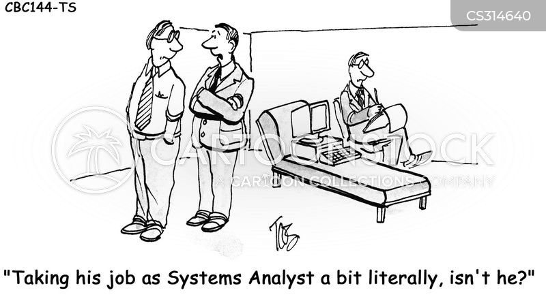 systems analyst cartoon