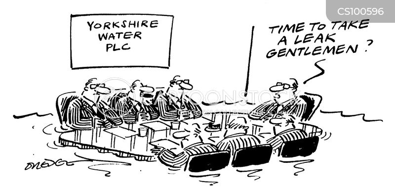 privatised utilities cartoon