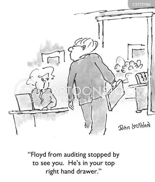auditing cartoon