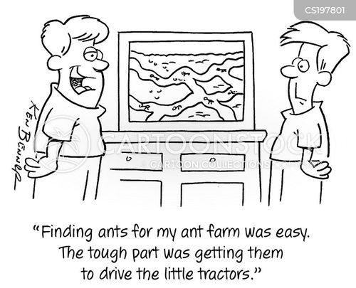 ant farm cartoon