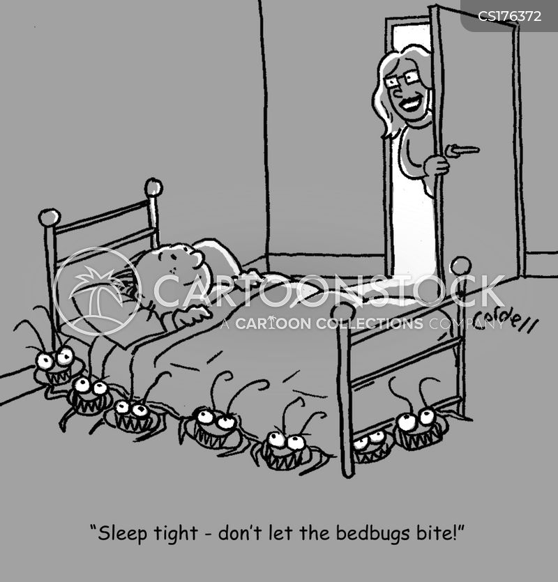 Bedbug Cartoons And Comics