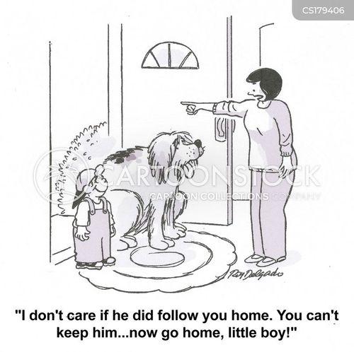 follows cartoon