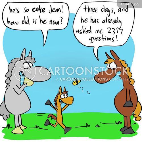horse-rider cartoon