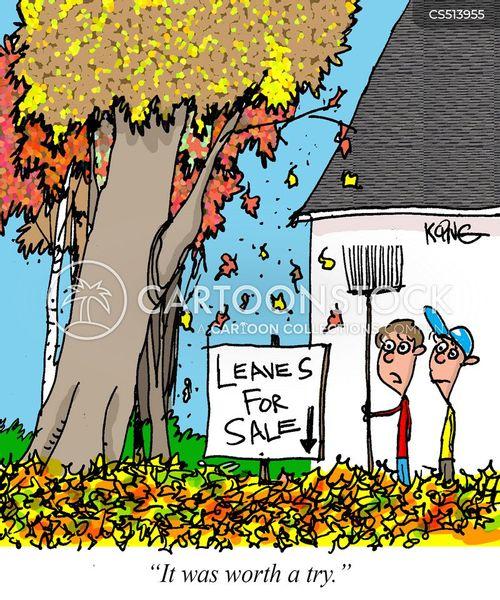 worth a try cartoon