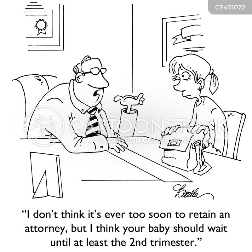 trimesters cartoon