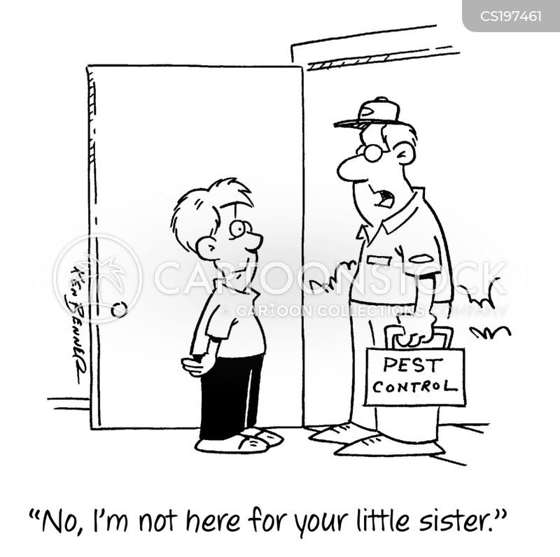 younger sisters cartoon
