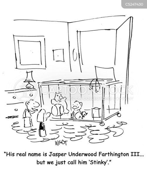 pretentious names cartoon