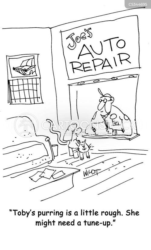 tune-up cartoon
