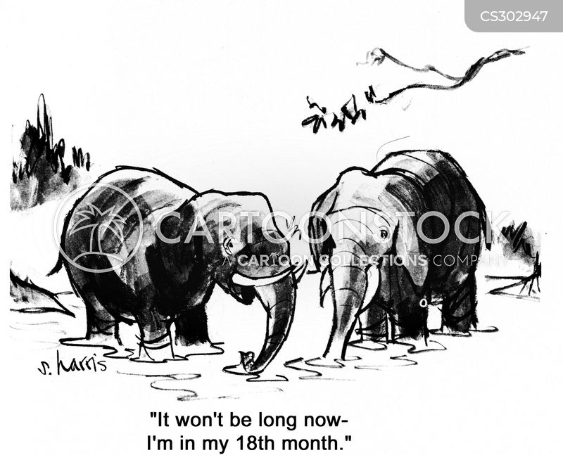 Gestation Period cartoons, Gestation Period cartoon, funny, Gestation Period picture, Gestation Period pictures, Gestation Period image, Gestation Period images, Gestation Period illustration, Gestation Period illustrations